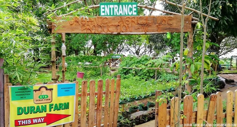 Duran Farm Bulacan TESDA Accredited