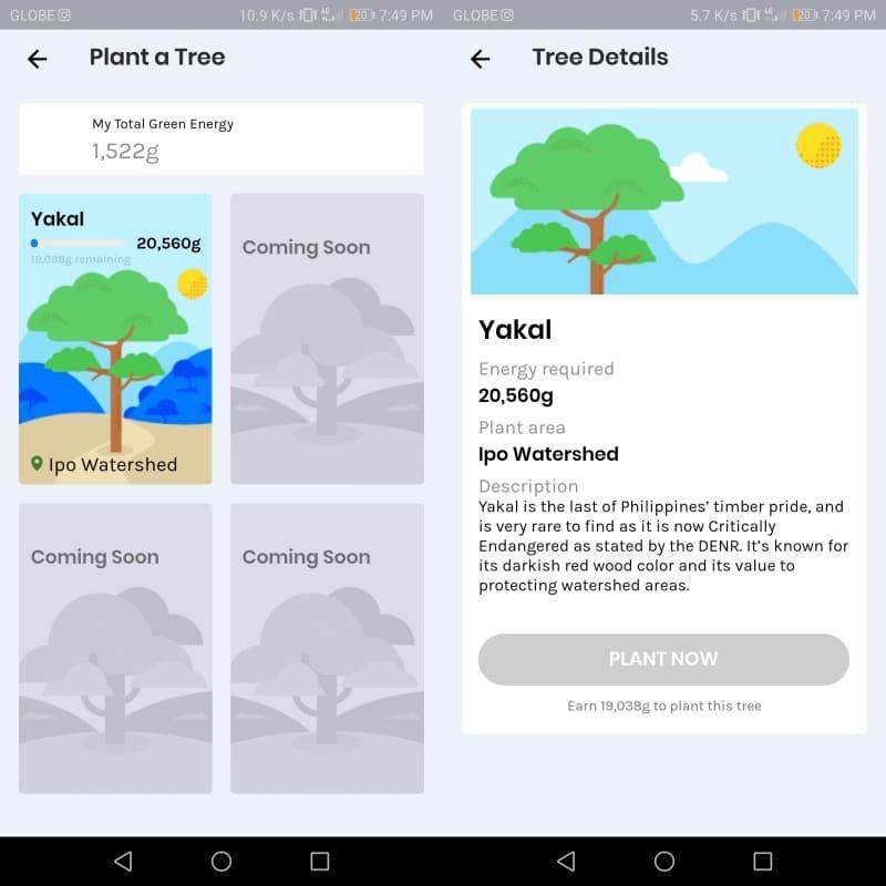 GCash Forest - Plant a Yakal Tree